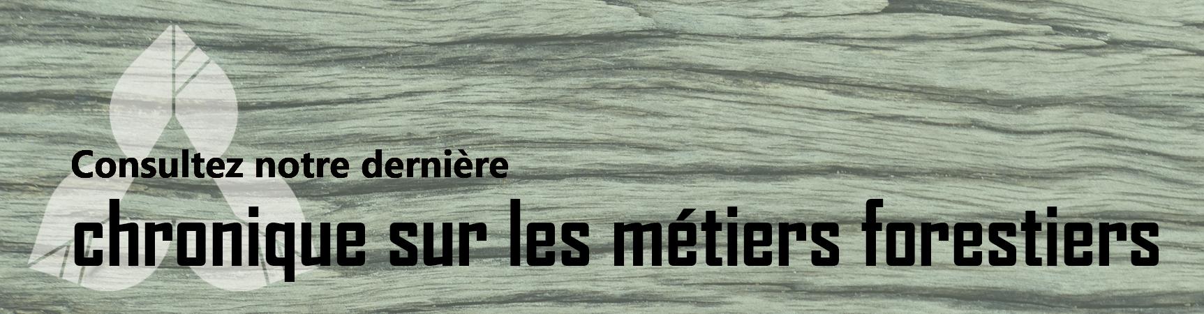 bandeau_homepage